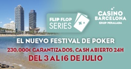 Flip Flop Series