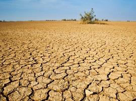 Día de sequía para los españoles en PokerStars